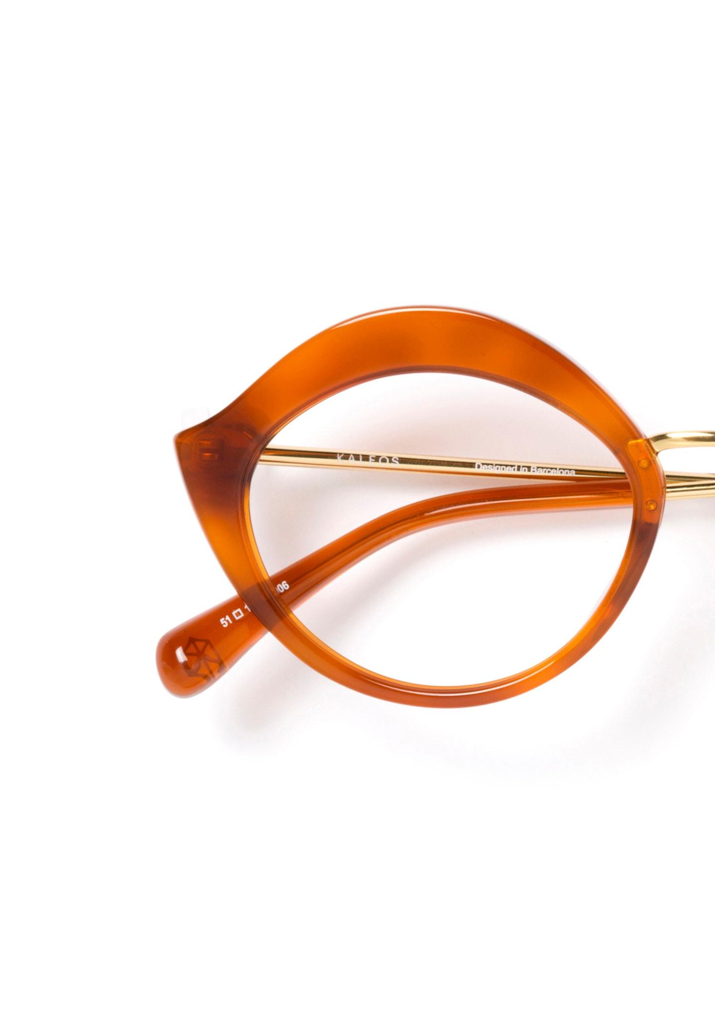 Gafas Brockovich Color 6