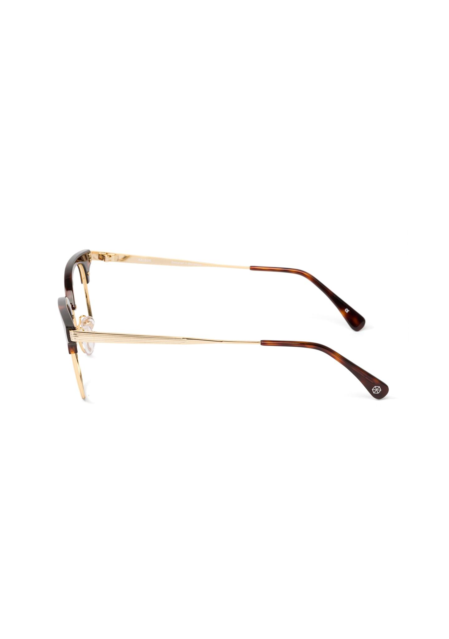 Gafas Burnham Color 2