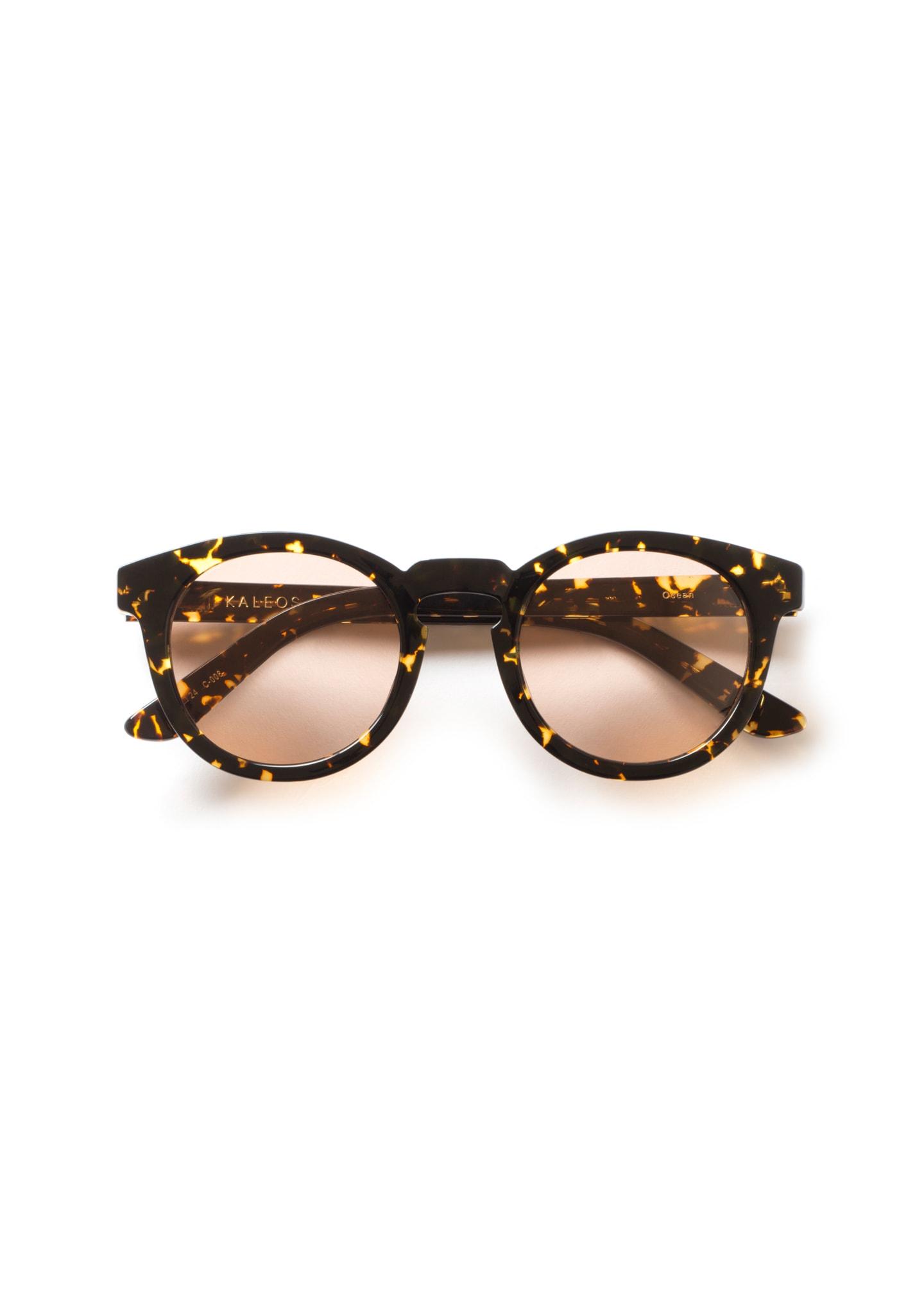 Gafas Ocean Color 8