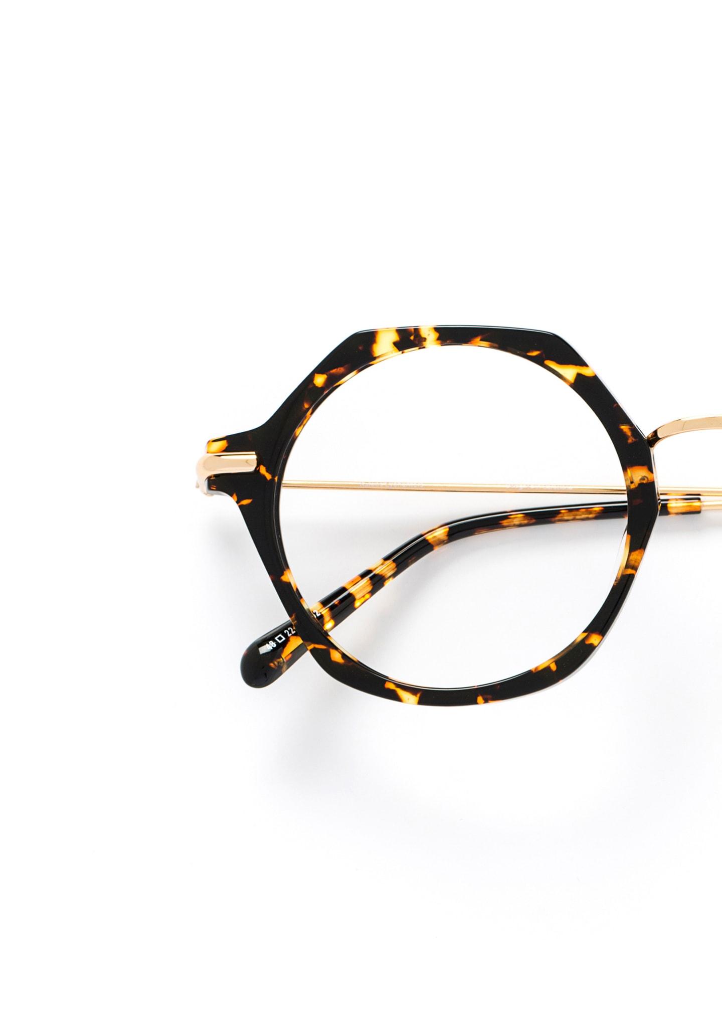 Gafas Trevethyn Color 2