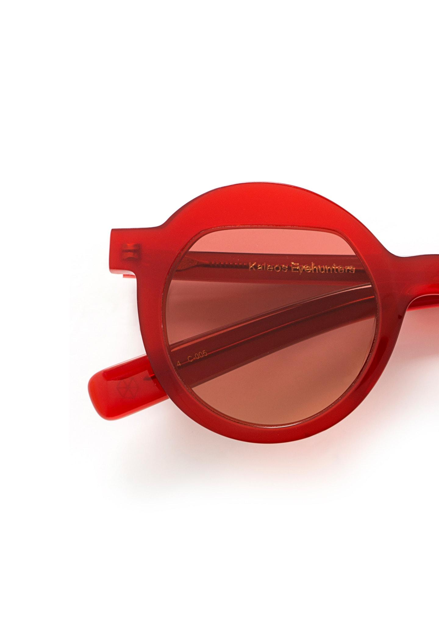 Gafas Pollitt Color 5