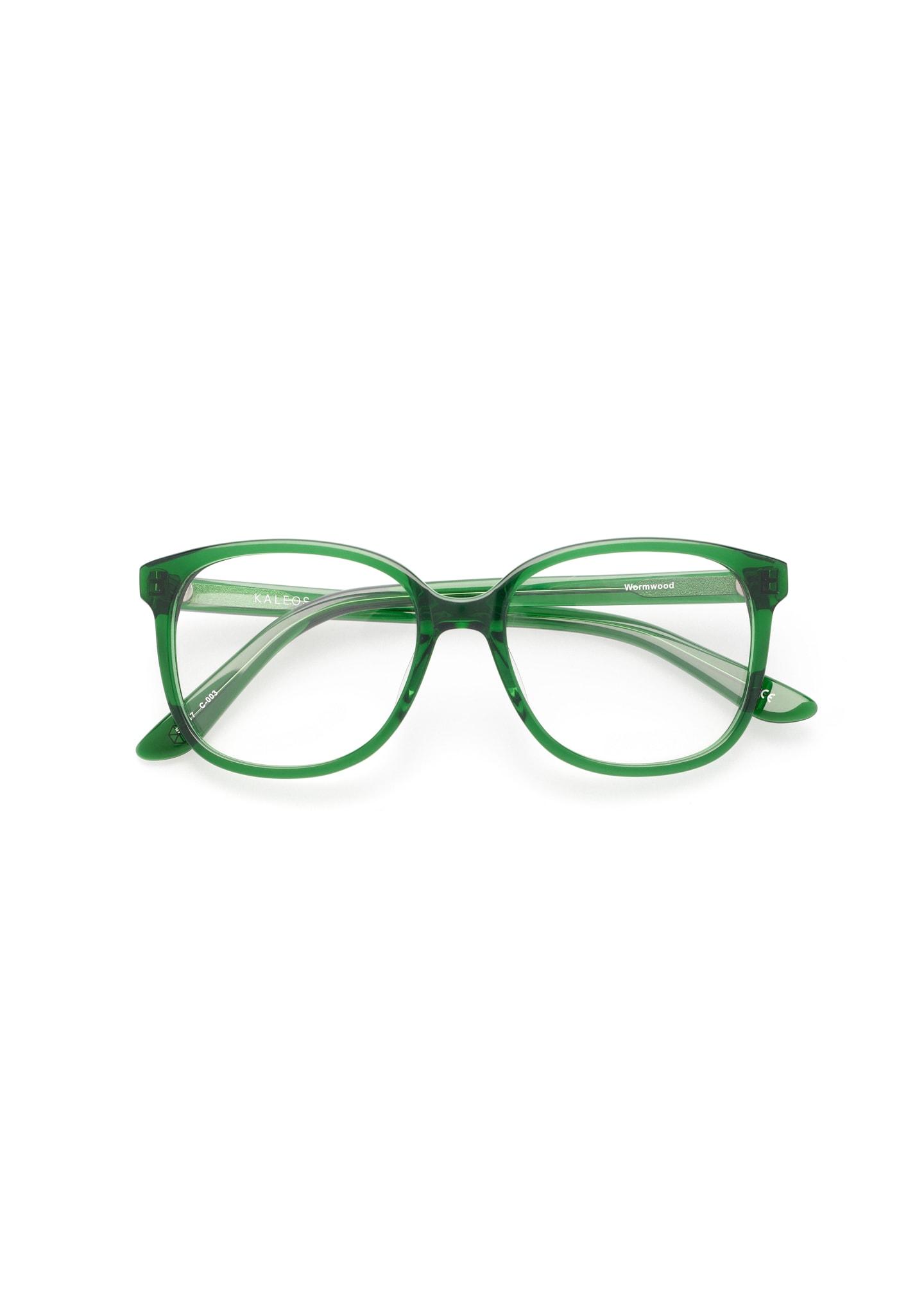 Gafas Wormwood Color 3